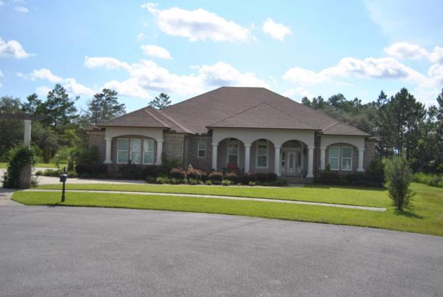 73 Cool Wind Court, Freeport, FL 32439 (MLS #803059) :: Keller Williams Realty Emerald Coast