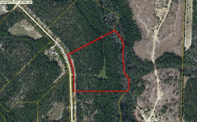 15.5 Acres Chapel Road, Laurel Hill, FL 32567 (MLS #803871) :: ResortQuest Real Estate