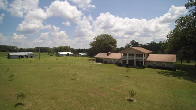 4858 Cliff Road, Graceville, FL 32440 (MLS #804140) :: Coastal Luxury