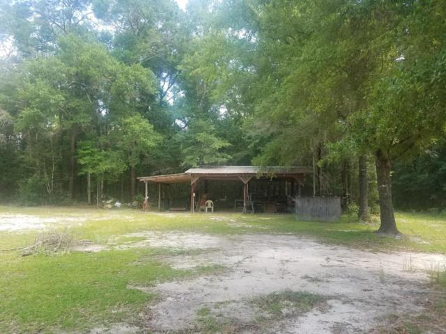 2973 Coon Bottom Rd Road, Ponce De Leon, FL 32455 (MLS #804321) :: 30a Beach Homes For Sale