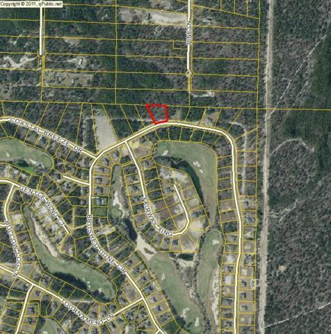 lot 21 Brushed Dune Circle, Freeport, FL 32439 (MLS #804795) :: Classic Luxury Real Estate, LLC