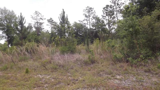 669 Red Fern Road, Crestview, FL 32536 (MLS #806121) :: ResortQuest Real Estate
