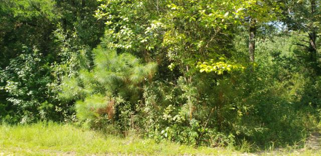 Lot 7 Salem Drive, Ponce De Leon, FL 32455 (MLS #806279) :: Coast Properties