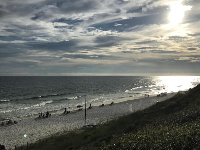50 Gossamer Lane Unit 1, Inlet Beach, FL 32461 (MLS #807143) :: Classic Luxury Real Estate, LLC