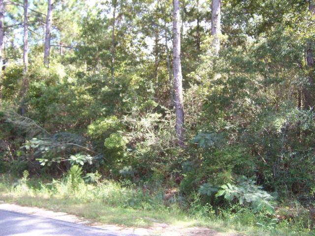 59 acres Punch Bowl Road, Defuniak Springs, FL 32433 (MLS #807194) :: ResortQuest Real Estate