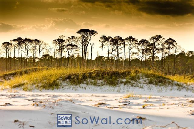 Lot 2 Stonegate Drive, Santa Rosa Beach, FL 32459 (MLS #807323) :: Classic Luxury Real Estate, LLC