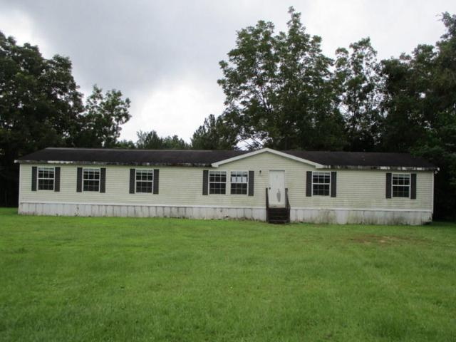 1901 Sexton Road, Defuniak Springs, FL 32433 (MLS #807413) :: Keller Williams Realty Emerald Coast