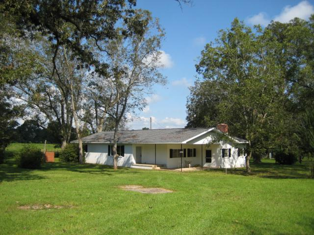 8656 N Highway 85, Laurel Hill, FL 32567 (MLS #807542) :: Coastal Luxury