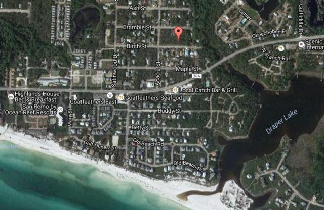 Lot 15 Birch Street, Santa Rosa Beach, FL 32459 (MLS #807774) :: Coast Properties