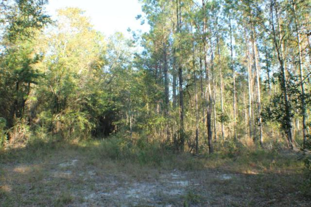 172ac(D-5) Lake Silver Road, Laurel Hill, FL 32567 (MLS #808541) :: Luxury Properties Real Estate