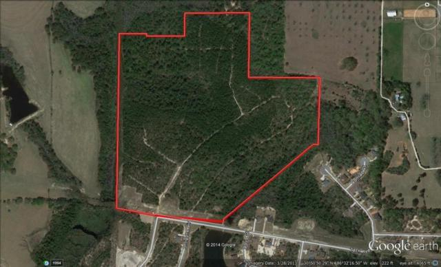 73 AC Zach Avenue, Crestview, FL 32536 (MLS #809138) :: Luxury Properties Real Estate