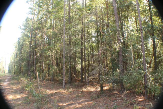 1.13 AC-B W Hwy 90, Holt, FL 32564 (MLS #809155) :: Keller Williams Emerald Coast