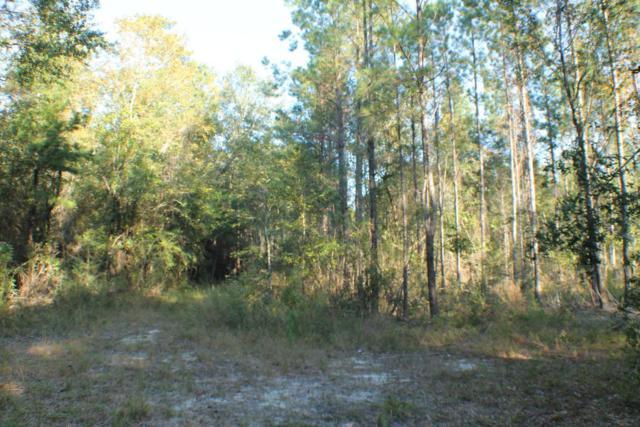 740.43 AC Welannee Boulevard, Crestview, FL 32536 (MLS #809165) :: Coast Properties