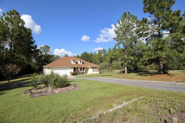 191 Blueberry Bush Lane, Defuniak Springs, FL 32433 (MLS #809168) :: 30a Beach Homes For Sale