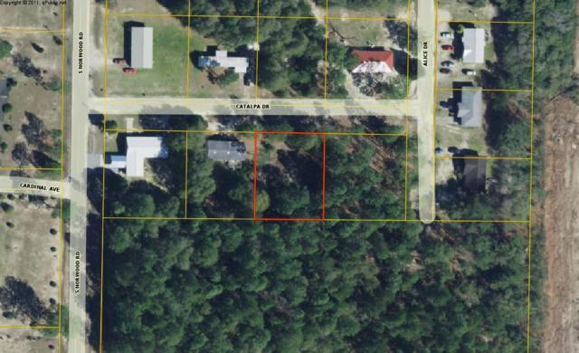 X Catalpa Drive, Defuniak Springs, FL 32435 (MLS #809192) :: ENGEL & VÖLKERS