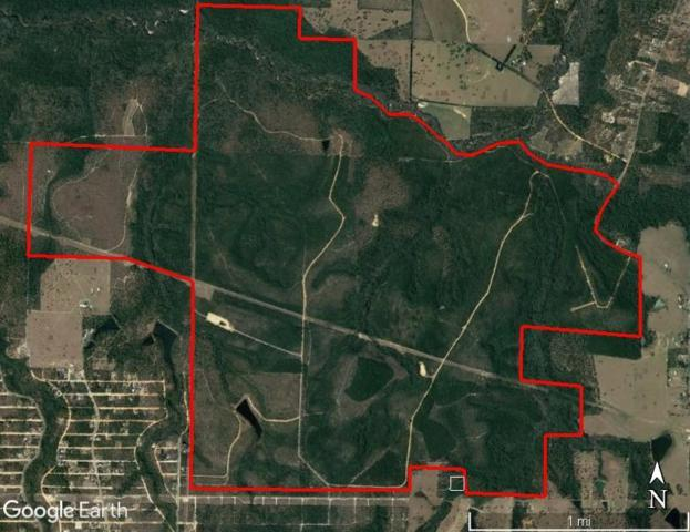 2300 Acres Kings Lake Road, Defuniak Springs, FL 32433 (MLS #809744) :: Linda Miller Real Estate