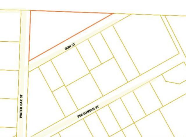 xx Gum Street, Freeport, FL 32439 (MLS #809758) :: Classic Luxury Real Estate, LLC