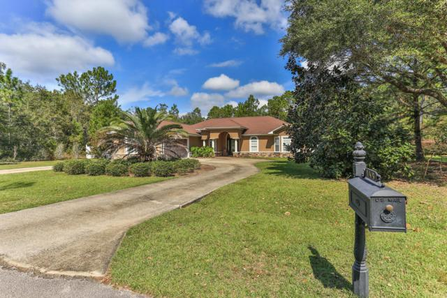 149 Forest Harbour, Freeport, FL 32439 (MLS #809840) :: Classic Luxury Real Estate, LLC