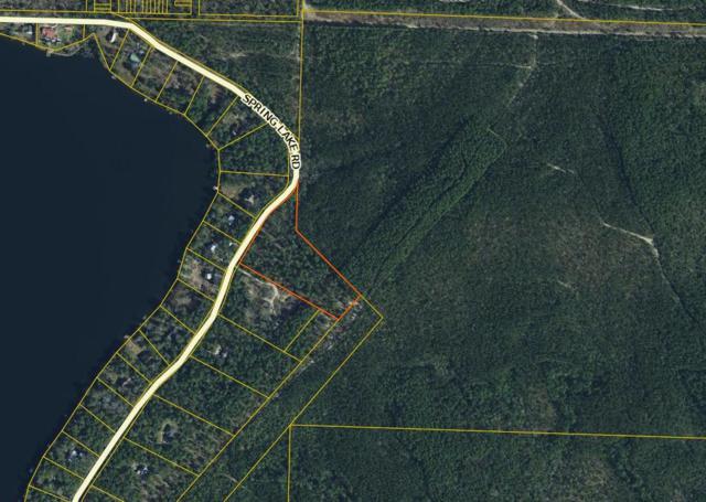 00 Spring Lake Road, Defuniak Springs, FL 32433 (MLS #809977) :: Keller Williams Realty Emerald Coast