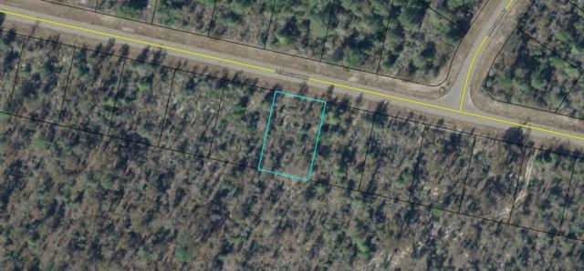 0.229 Acre Pennington Drive, Chipley, FL 32428 (MLS #810828) :: Somers & Company