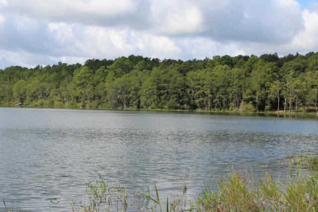 LOT#1 Blue Pond Circle, Ponce De Leon, FL 32455 (MLS #810987) :: RE/MAX By The Sea