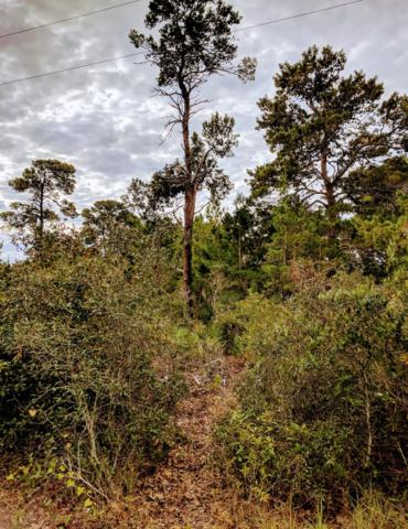 Lot 22 First Court, Santa Rosa Beach, FL 32459 (MLS #811748) :: Hilary & Reverie