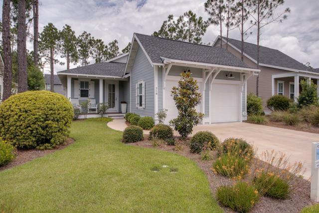 218 Jack Knife Drive, Inlet Beach, FL 32461 (MLS #811866) :: The Premier Property Group