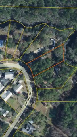 728 Phillips Drive, Freeport, FL 32439 (MLS #812235) :: Classic Luxury Real Estate, LLC