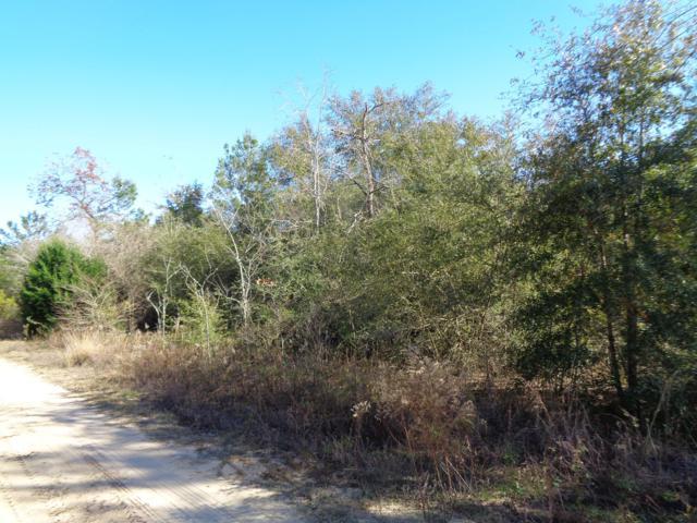 Lot 9 Bret Drive, Defuniak Springs, FL 32433 (MLS #812389) :: Counts Real Estate Group