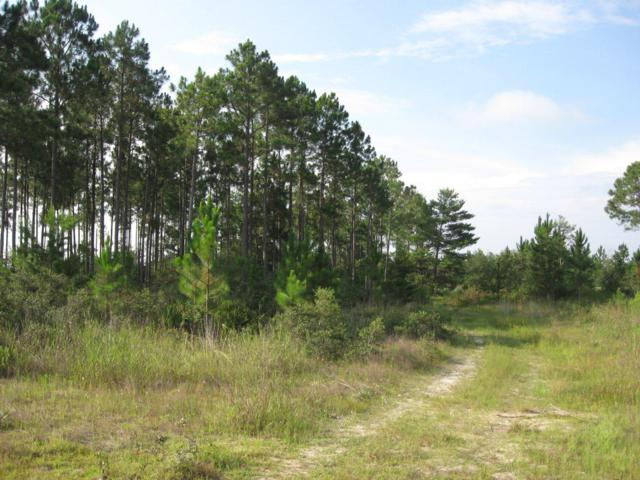 LOT 2E Brushed Dune Circle, Freeport, FL 32439 (MLS #812562) :: Hammock Bay