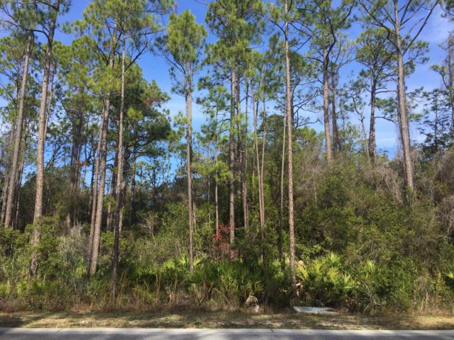 00 Redbud Lane, Seacrest, FL 32461 (MLS #812643) :: RE/MAX By The Sea