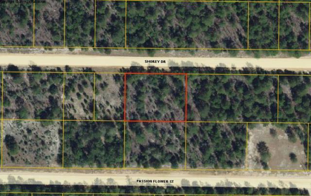 XX Shorey Drive Lots 13 & 14 Bl, Defuniak Springs, FL 32433 (MLS #812931) :: Luxury Properties Real Estate