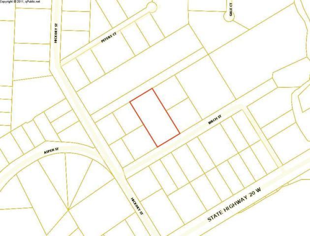 4 lots Birch Street, Freeport, FL 32439 (MLS #813584) :: RE/MAX By The Sea