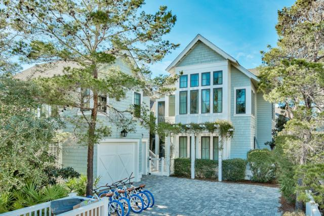 25 N Founders Lane, Inlet Beach, FL 32461 (MLS #814010) :: Luxury Properties Real Estate