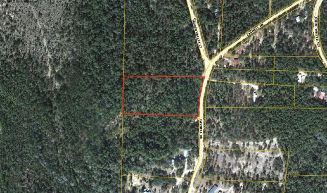 4 +/- Acre Caswell Drive, Defuniak Springs, FL 32433 (MLS #814264) :: CENTURY 21 Coast Properties
