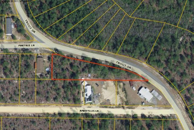 Lot 13&14 Trout Dr., Defuniak Springs, FL 32433 (MLS #814417) :: Luxury Properties Real Estate