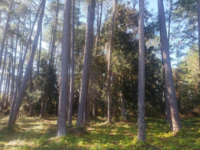 0 Thompson Road, Santa Rosa Beach, FL 32459 (MLS #814487) :: Classic Luxury Real Estate, LLC
