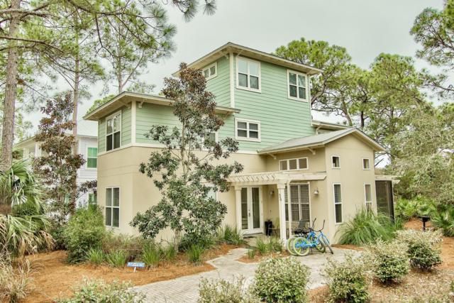 54 Cassine Garden Circle, Santa Rosa Beach, FL 32459 (MLS #814616) :: The Premier Property Group
