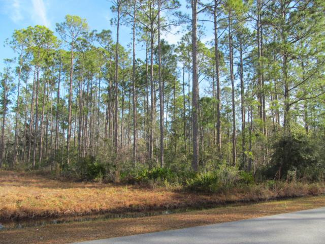 LOT 53 Mallet Bayou Road, Freeport, FL 32439 (MLS #814914) :: Scenic Sotheby's International Realty