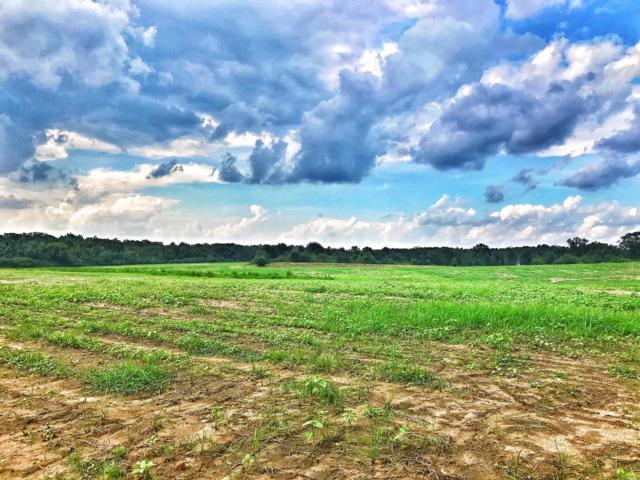 53 acres N Hwy 181, Westville, FL 32464 (MLS #815019) :: Scenic Sotheby's International Realty
