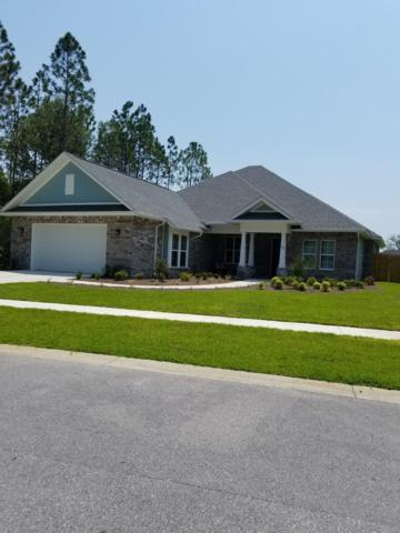 282 Concert Court, Freeport, FL 32439 (MLS #815468) :: Hammock Bay
