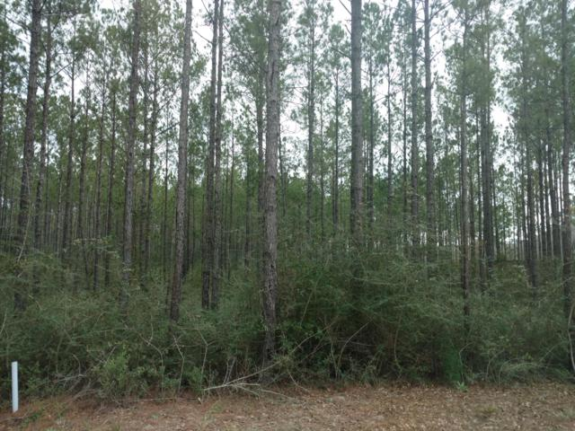 Lot 33 Secret Street, Freeport, FL 32439 (MLS #815706) :: Hammock Bay