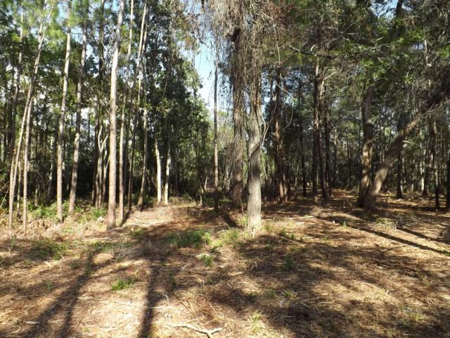 Lot 6 Turtle Creek Drive, Santa Rosa Beach, FL 32459 (MLS #815872) :: Counts Real Estate Group