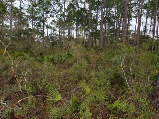 lot 11 Bonita Court, Santa Rosa Beach, FL 32459 (MLS #815888) :: CENTURY 21 Coast Properties