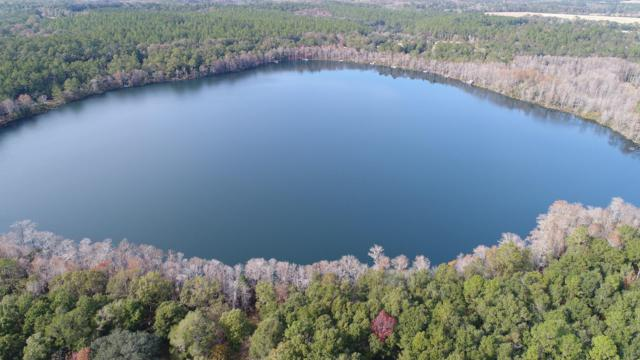 Lot 34 &35 Blue Pond Lane, Ponce De Leon, FL 32455 (MLS #816013) :: ResortQuest Real Estate