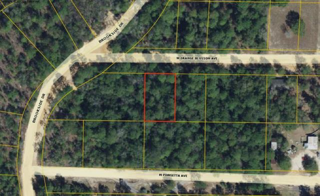 Lot 3 W Orange Blossom Avenue, Defuniak Springs, FL 32433 (MLS #816136) :: Scenic Sotheby's International Realty