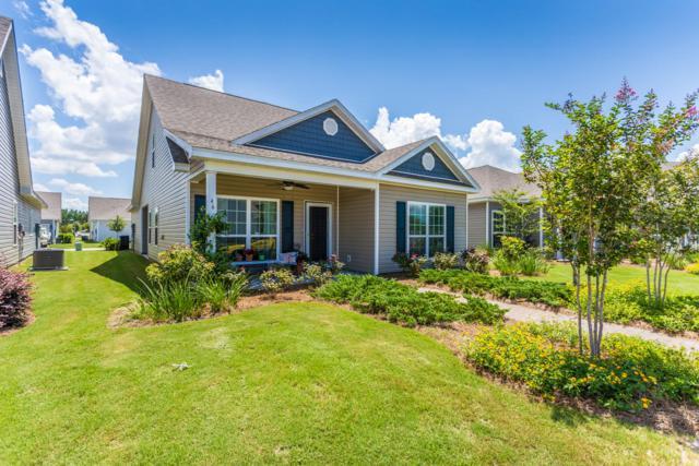 46 Lilly Bell Lane Lane, Freeport, FL 32439 (MLS #816290) :: ResortQuest Real Estate