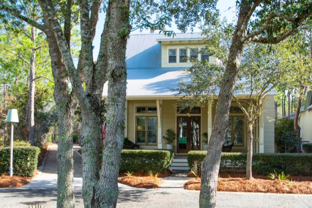53 Sandy Creek Circle, Santa Rosa Beach, FL 32459 (MLS #816423) :: Berkshire Hathaway HomeServices Beach Properties of Florida