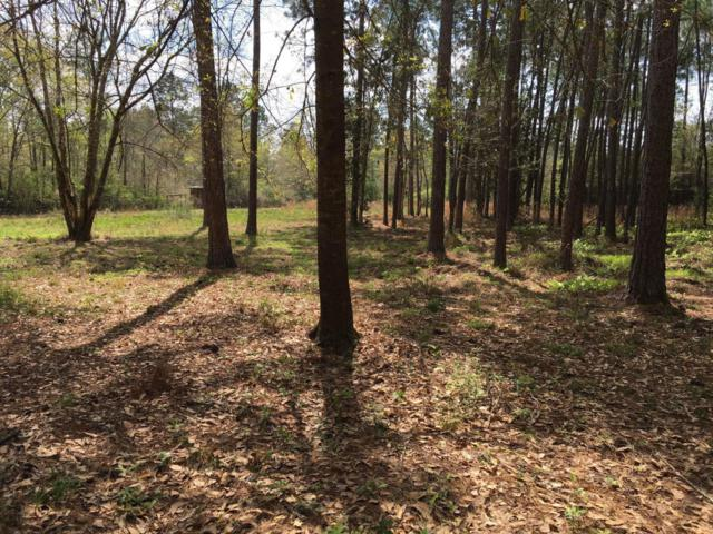 2 Acres Antioch Road, Crestview, FL 32536 (MLS #816480) :: Scenic Sotheby's International Realty