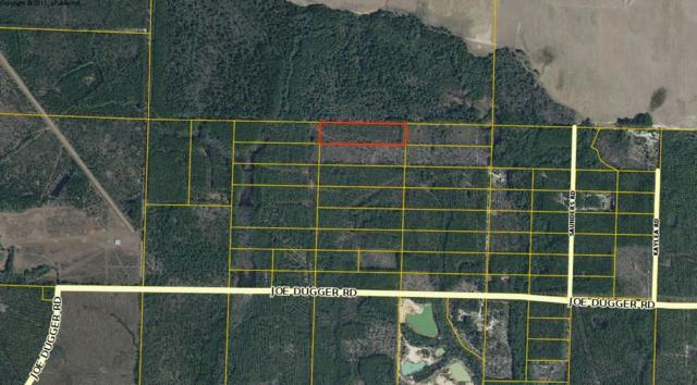 10 Acres Off Joe Dugger Road, Freeport, FL 32439 (MLS #816946) :: Hammock Bay